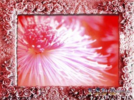 Фоторамка – Цветы