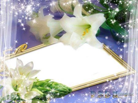 Фоторамка Сияние лилии