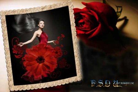 Фоторамка  Красная роза