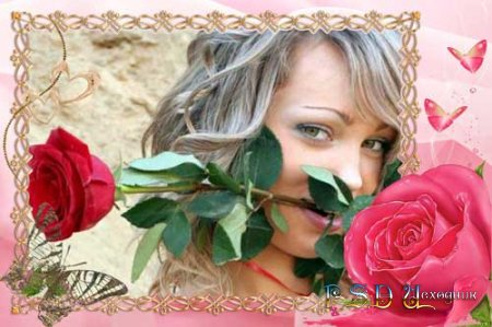 Фоторамка  Алая роза