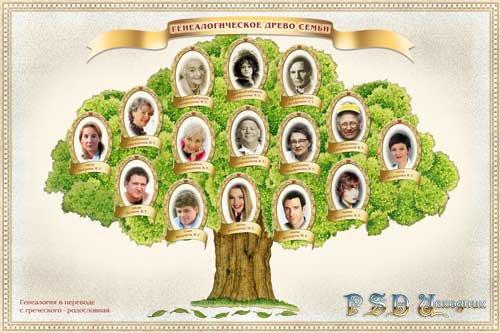 Фото рамка генеалогическое дерево